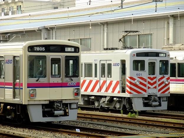 DSCF5501