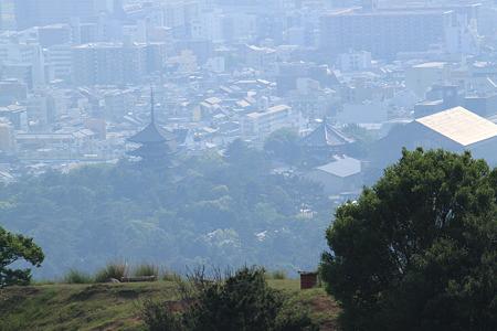 若草山からの興福寺五重塔