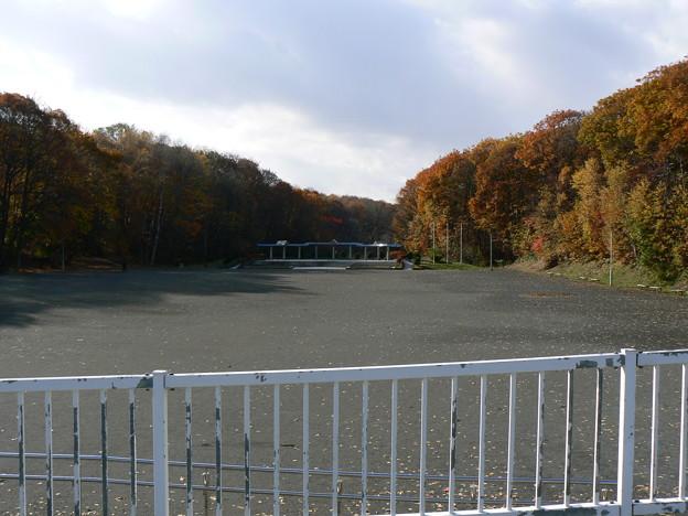 Photos: 青葉中央公園P1010282