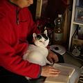 写真: 読書中ですが、なにか?