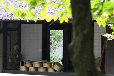2009.09.27 長屋門公園 竹