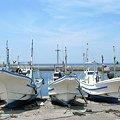 Photos: 房総の漁港・夏:2008_0719_pwsA640_IMG_3355