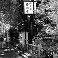 初秋の上野さんぽ~1