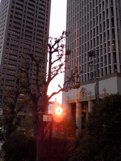 ビル間の夕日