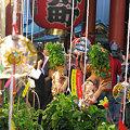 写真: 下町のほおずき市!(7/9)
