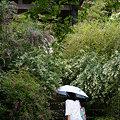 Photos: 萩海蔵寺090913-562