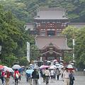 Photos: 五月雨、梅雨の鎌倉!(110528)