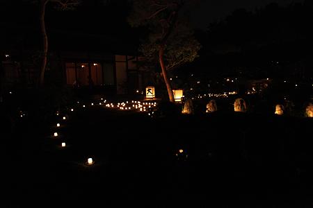 妙心寺東林院 - 04