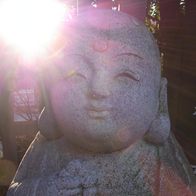 【東京|神社仏閣】 大円寺 (52)