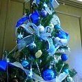 Photos: 今年の家のツリーはキュアマ...