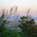 鳴滝山、秋の夕景色
