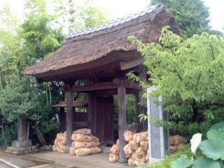 Photos: 深緑の山門(7月7日、小袋谷成福寺)
