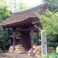深緑の山門(7月7日、小袋谷成福寺)