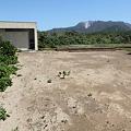 写真: IMG_6804神津島__天上山登山と島巡り