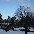 Photos: 兼六園 梅園 夕暮れ時
