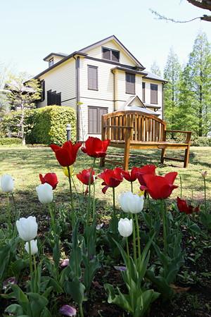 外交官の家(2)