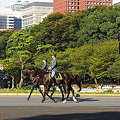 Photos: 馬車が行く5