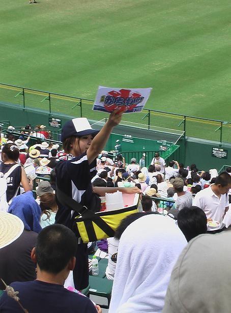 甲子園48