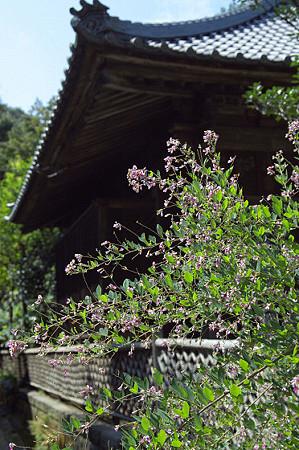 秋の鎌倉 04