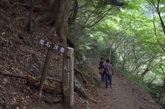 写真: 阿夫利神社から日向薬師へ 02