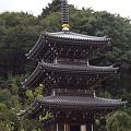 写真: 阿夫利神社から日向薬師へ 19