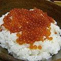 写真: 20091003 いくら丼