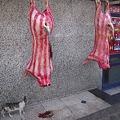 Photos: 肉と猫