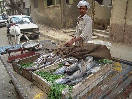 魚売りの少年